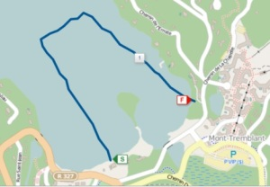 My actual swim, according to my Garmin. I did a mostly decent job sighting, at least.
